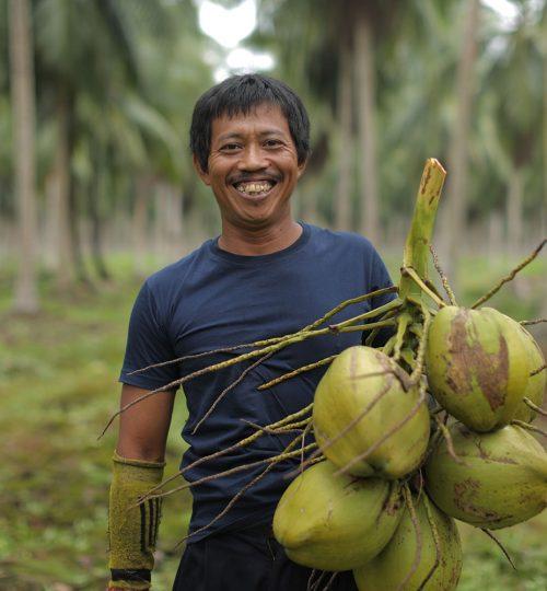 Farmer coconut pt sas