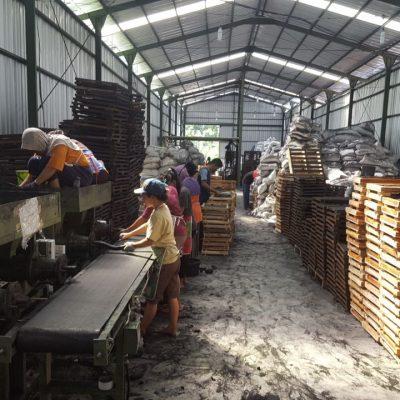 factory coconut charcoal briquette pt sas